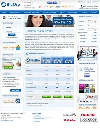 HYIP bluoro screenshot home page