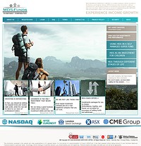 HYIP mds-funds screenshot home page