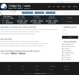 HYIP bsassets screenshot home page