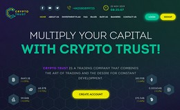 HYIP crypto-trust.biz screenshot home page