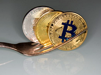 over 40 bitcoin forks are down